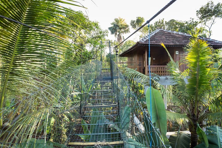 Sky walk to a Tree house in a Spice plantation