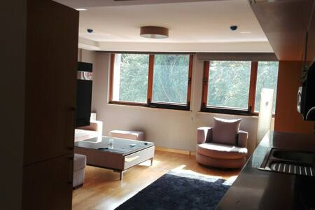 very comfortable flat in Istanbul - sisli - Leilighet