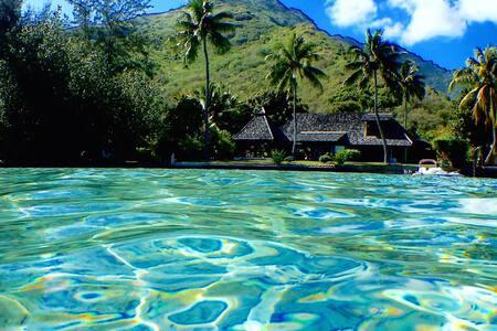 Exceptional Polynesian property with beachfront - Maharepa