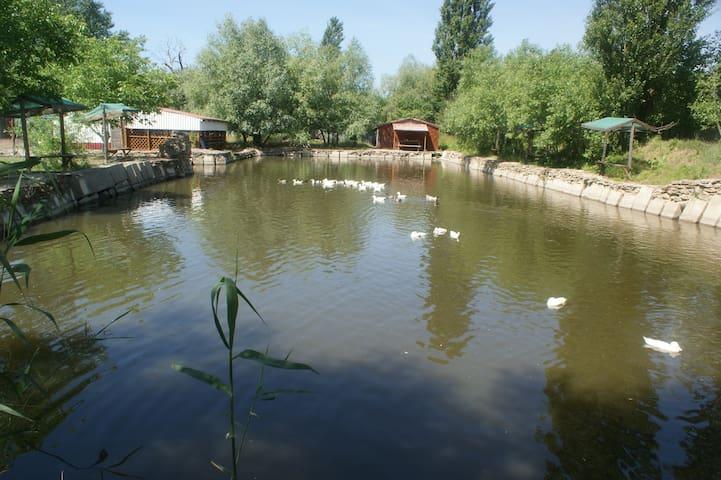 Рыболовная экоферма под Анапой - Anapa - Bed & Breakfast