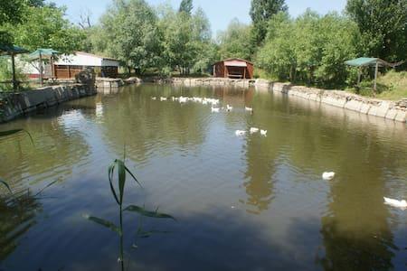 Рыболовная экоферма под Анапой - Anapa