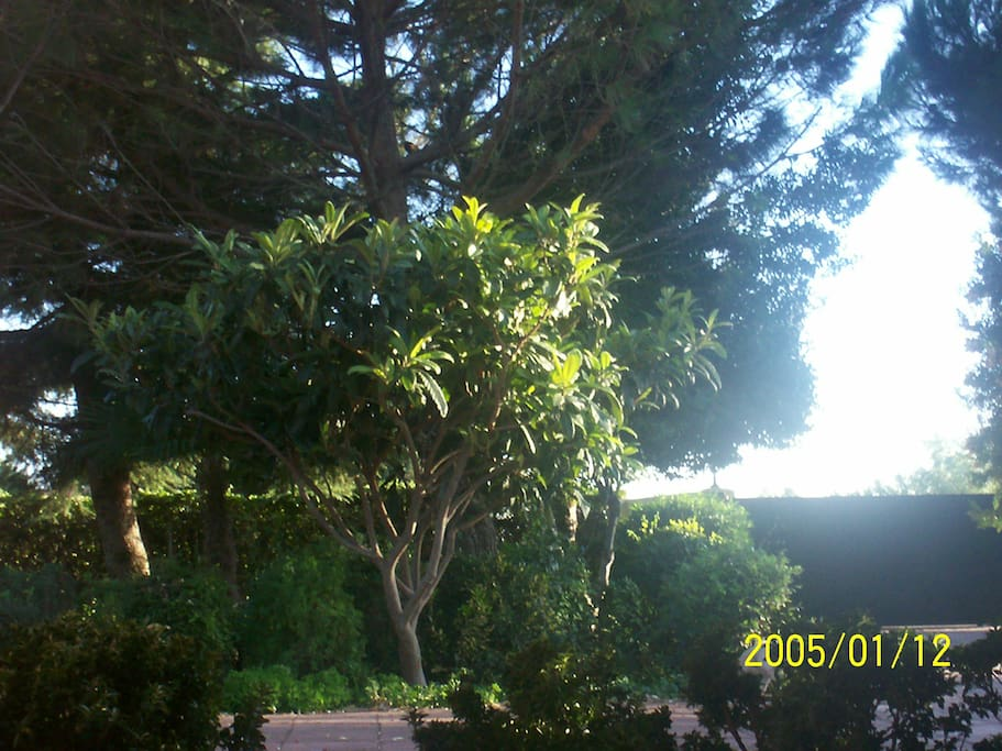 Casa acogedora gran jard n para descansar chalets for for Jardines oasis valdetorres