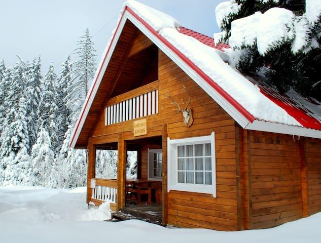 Alpine Chalet Hunters - Borovets - House