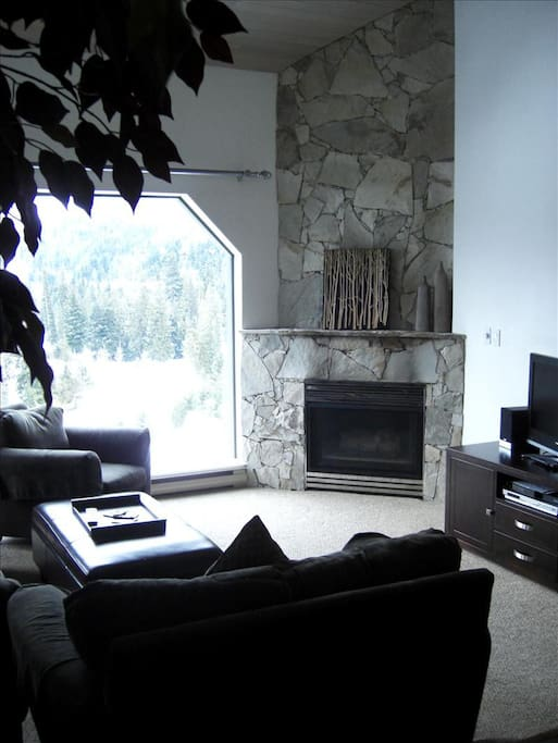 Sunken LR with gas fireplace and picturesque views,
