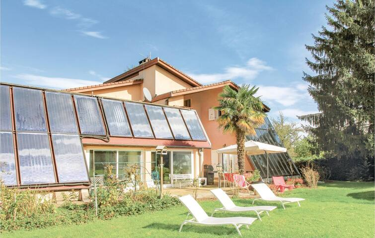 Holiday cottage with 5 bedrooms on 250m² in St Etienne d St Geoirs