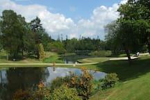 Gleneagles Cottage - Grounds