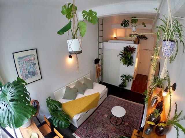 Urban Jungle Apartment in Auckland City centre