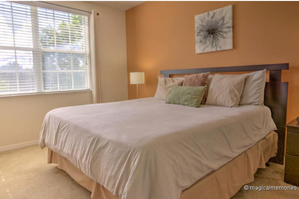 Ensuite Master bedroom with king size bed, 32 inch TV and lake view