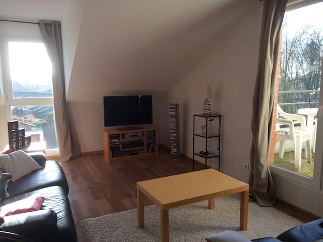 Bel appartement de 60m2 - Saultain