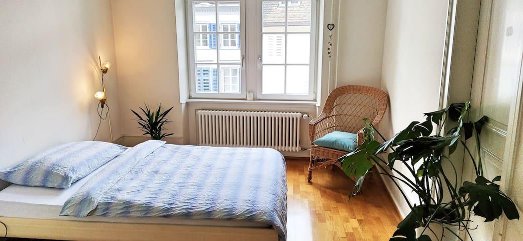 Gemütliches, helles Zimmer in Altstadt von Liestal