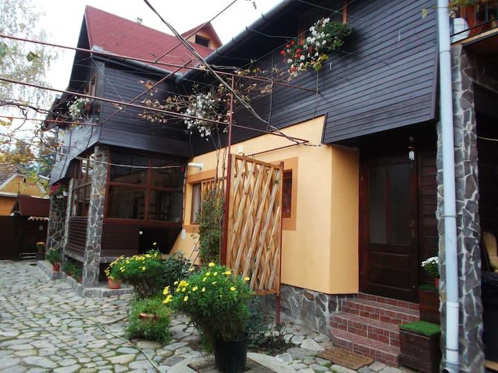 Boarding house - Sibiel -  Transylvania