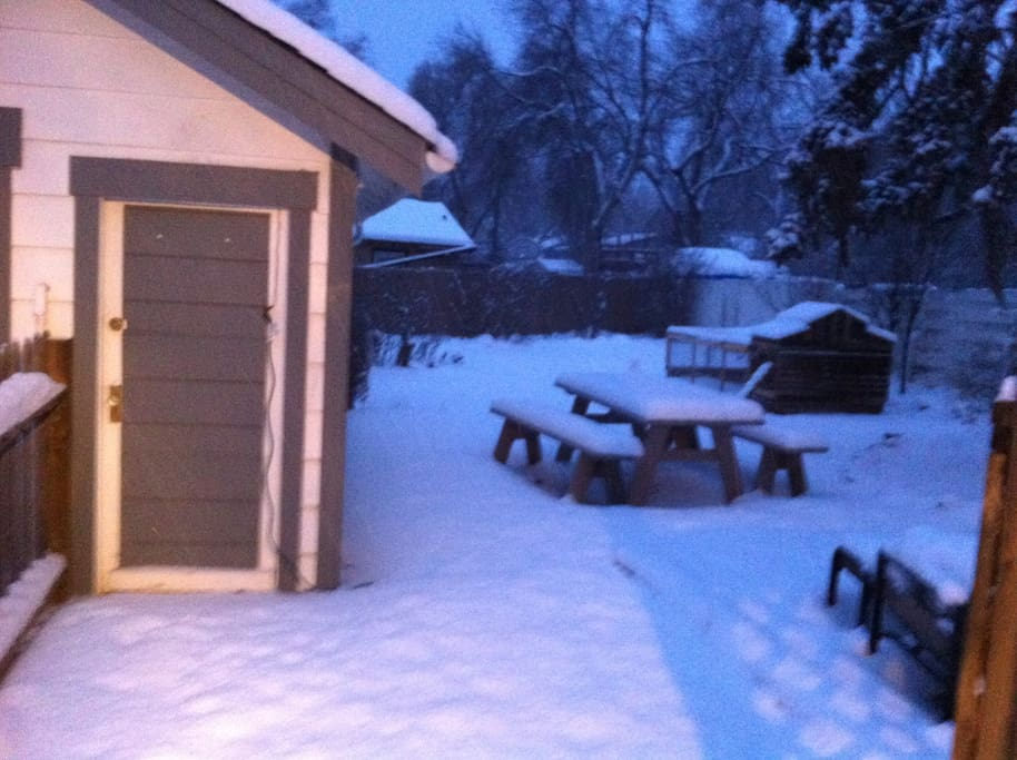 Back yard (chicken coop in the back, but I don't currently have any chickens)