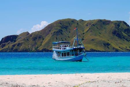 Sailing Komodo - Alam Kaya Private Charter