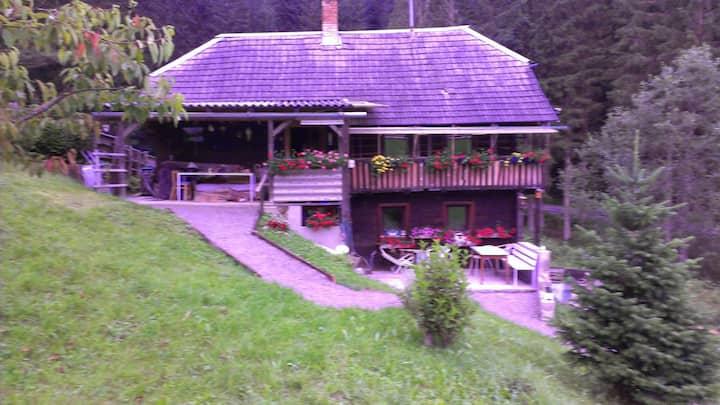 Ferienwohnung/Apartment mit Terrasse  in Arriach