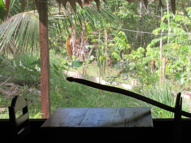 Avatar Centre Lodge  - Ayahuasca & Plant Medicines - Tamshiyacu - Allotjament sostenible a la natura