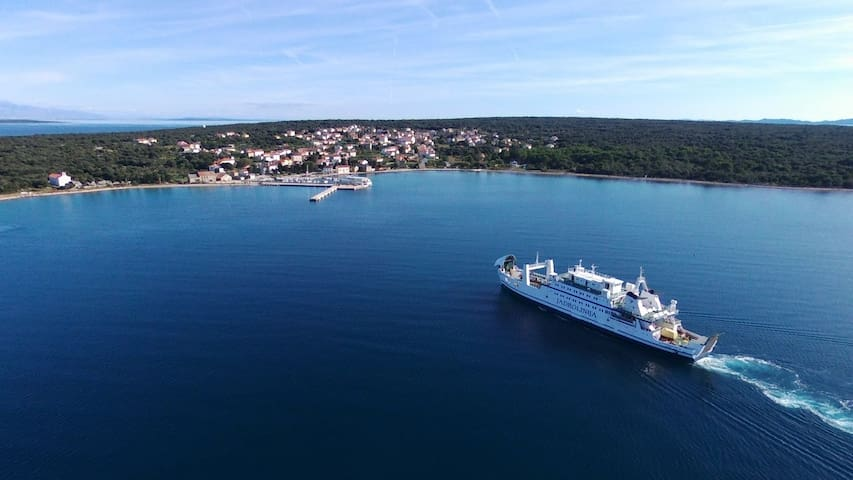 Olib is reached by ferry or catamaran from Zadar.