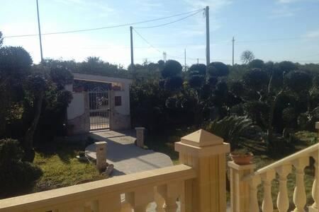 La quiete - Cellamare, Puglia, IT
