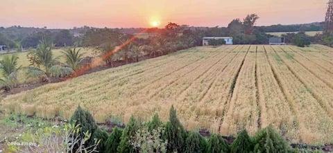 Hudda's Farm (Sasan Gir)  Forest Best Place