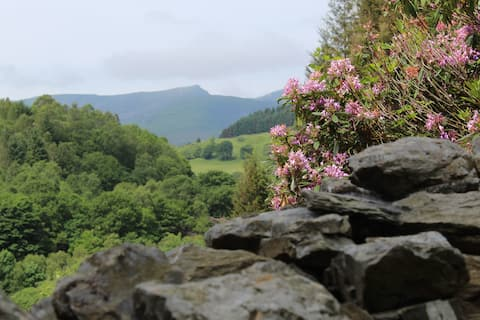 Corris cottage with a view