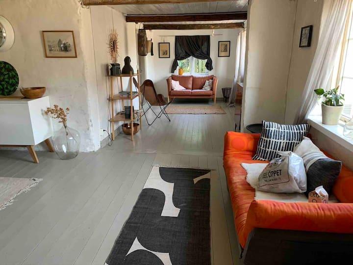 Österlen -Sweden's Provance , farmhouse living