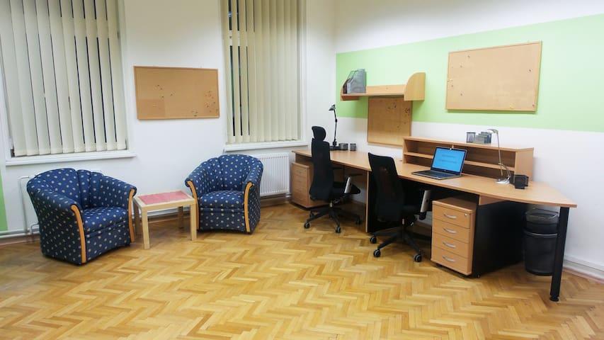 Big room only for you - Brno - Leilighet