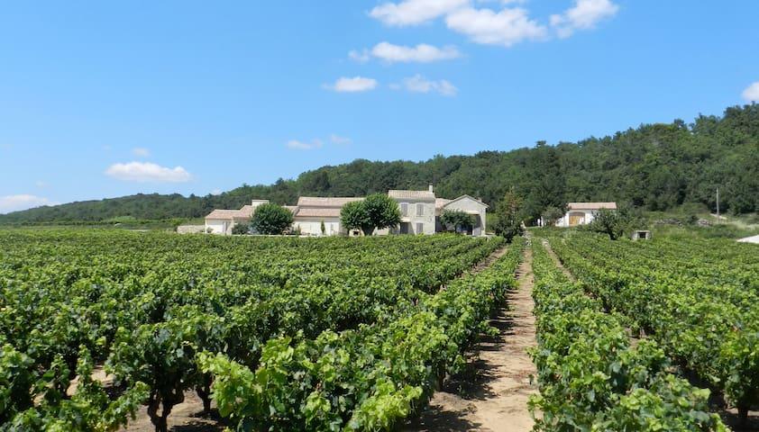 LE MAS DE BONNAUD - Cavillargues - Vacation home