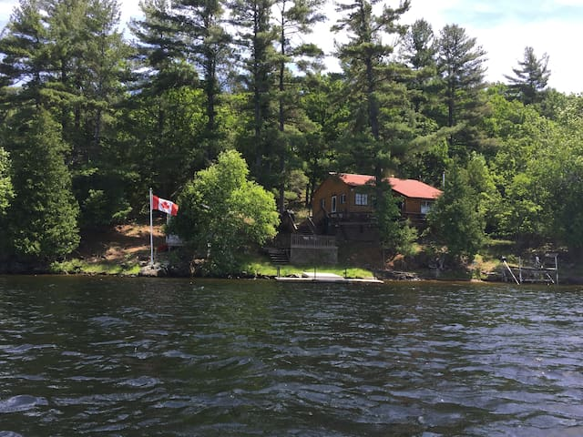 Island Cottage Paradise on Belmont Lake - Havelock - Blockhütte