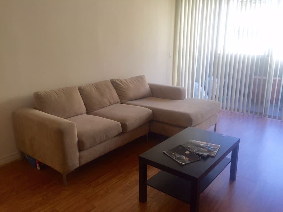 Large living room space with lots of sunlight.  My couch is the most comfortable ever!