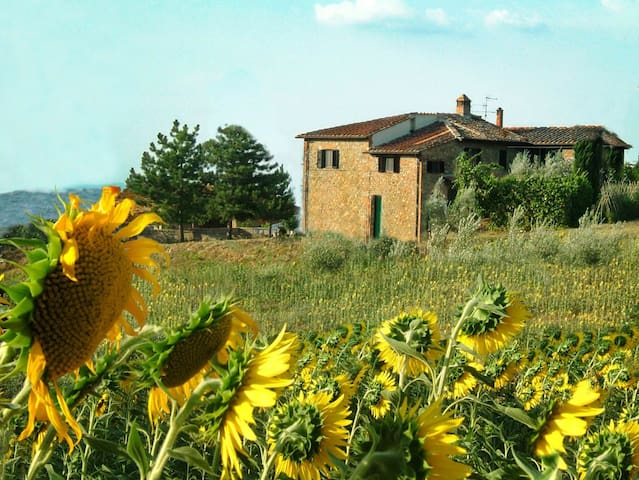 The Sunflowers apartment-Farmhouse San Gimignano