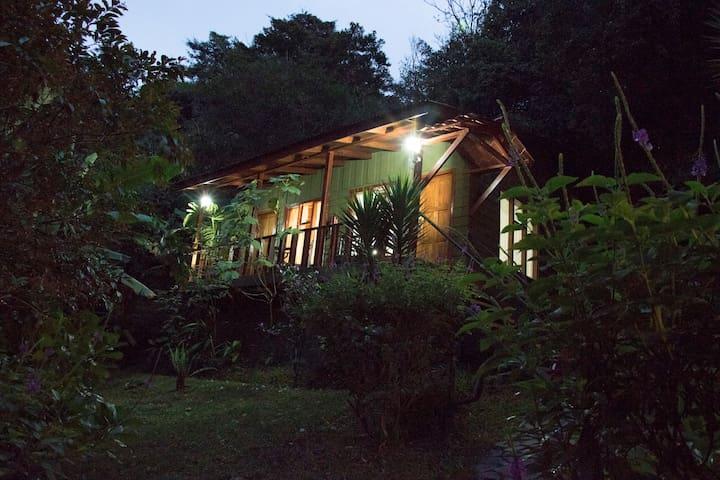 Habitación Standard en Jaguarundi Lodge