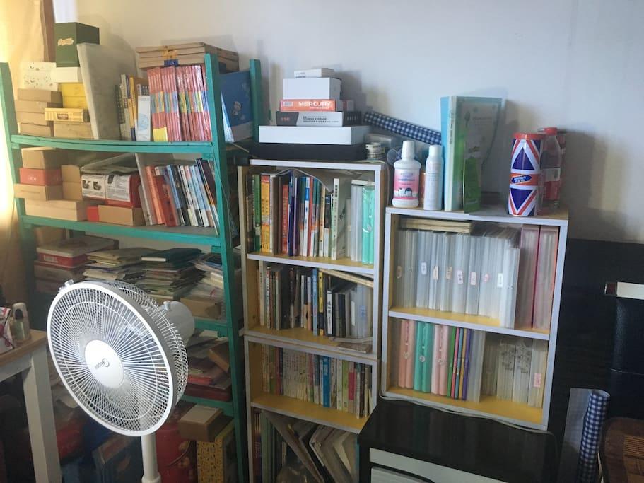 bookshelf beside the bed