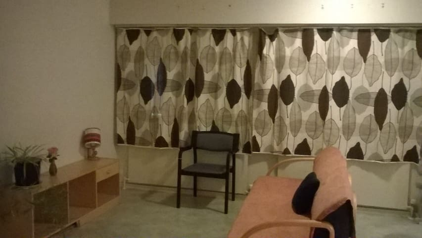 2-room flat in Kuopio centrum - Kuopio - Apartamento