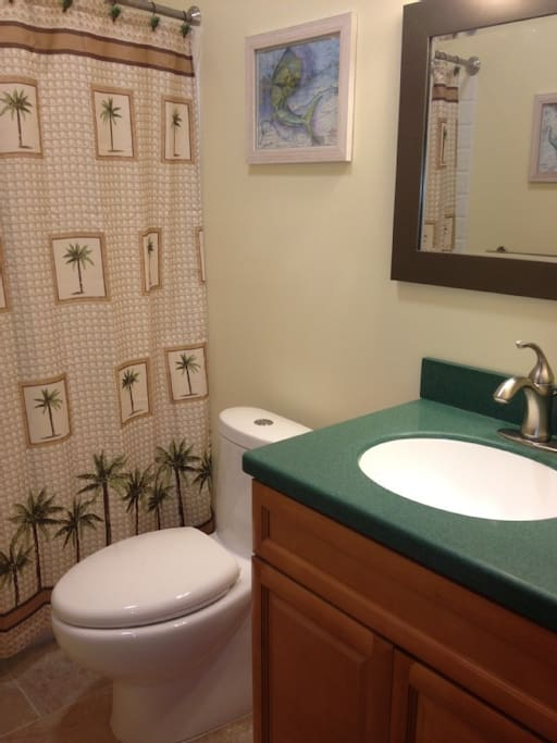 Newly remodeled guest bath with shower/tub