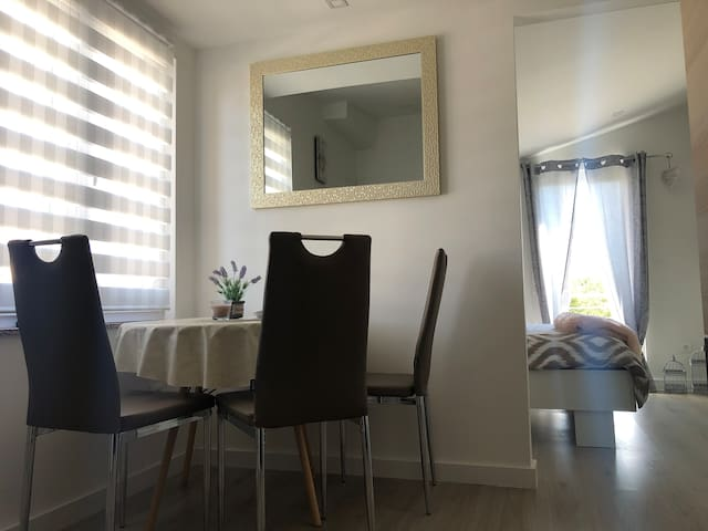 Studio apartman Gabriel/free parking/
