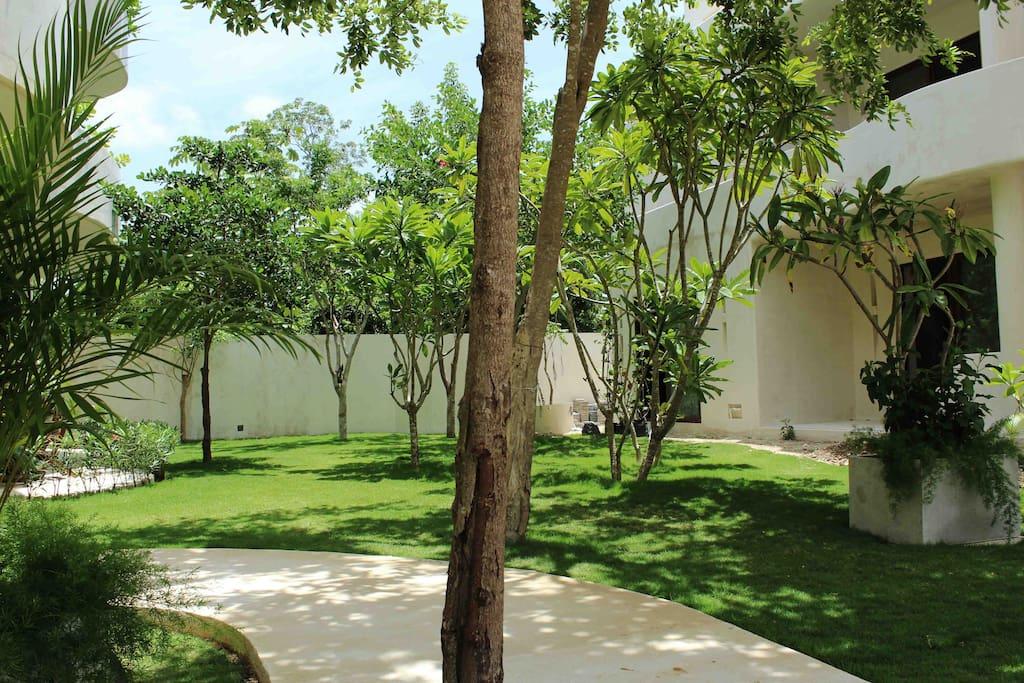 Jardín área común