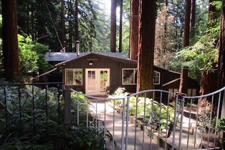 Rustic Redwood Cabin