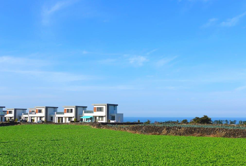 Seaside town house 제주의 핫플레이스 애월의 바닷가 타운하우스