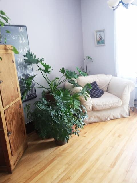 Cozy room in limoilove