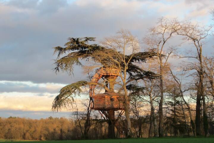 Cabane perchée avec bain nordique proche Toulouse - Caragoudes - Hus i træerne
