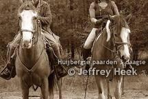 Paarden rit heid