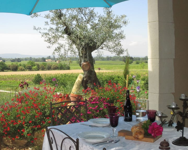 Provencal farmhouse, beautiful view
