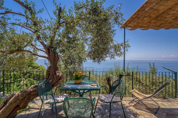 Maison Les Oliviers dans la Riviera Italienne
