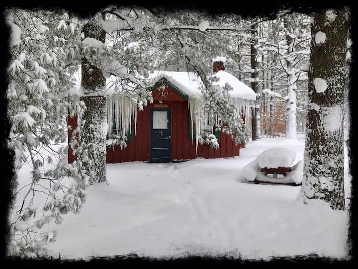 Ellis Lake Resort - Elm Log Cabin-Interlochen