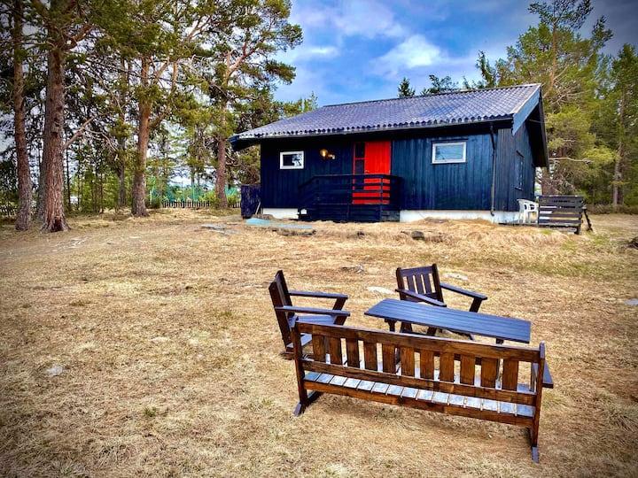 Hytte på Golsfjellet/Valdres