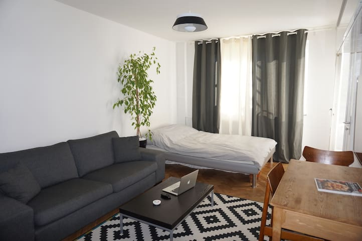 comfy private studio - next to munich's river Isar - München - Lejlighed
