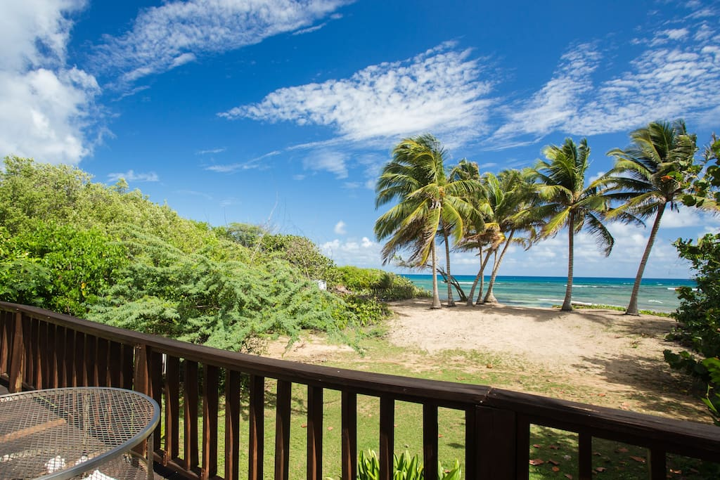 Apartment Rooms For Rent Vieques Puerto Rico