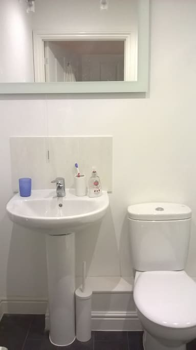 En-suite shower room with basin & WC for guest's sole use