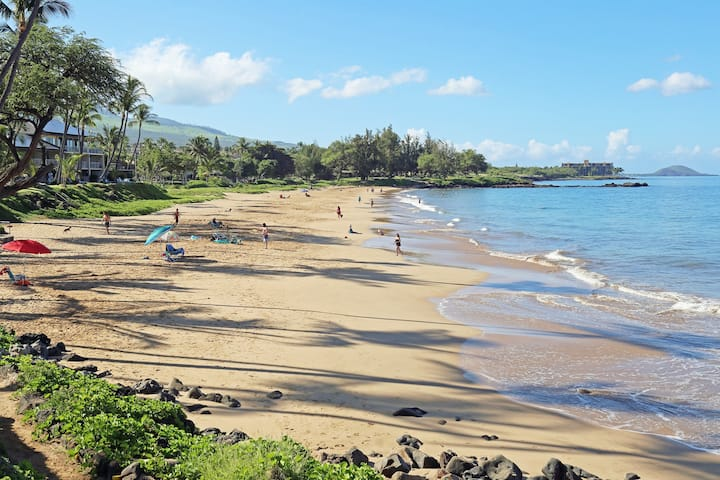 Kihei Kai Nani **CLEAN** Deluxe Unit- tax included