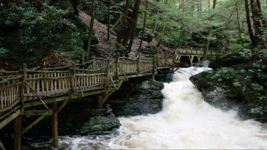 Experience the natural beauty of Shawnee Village