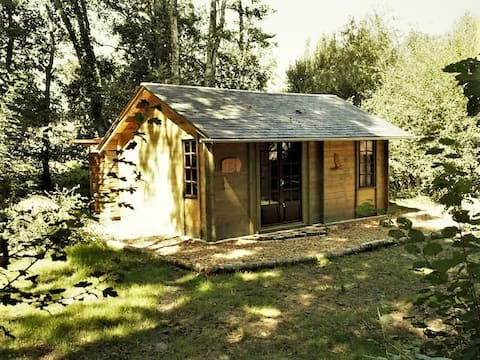 Comfortable secluded off grid cabin